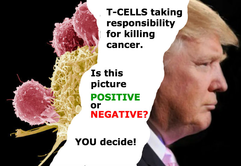 T-cells taking responsibility for killing cancer