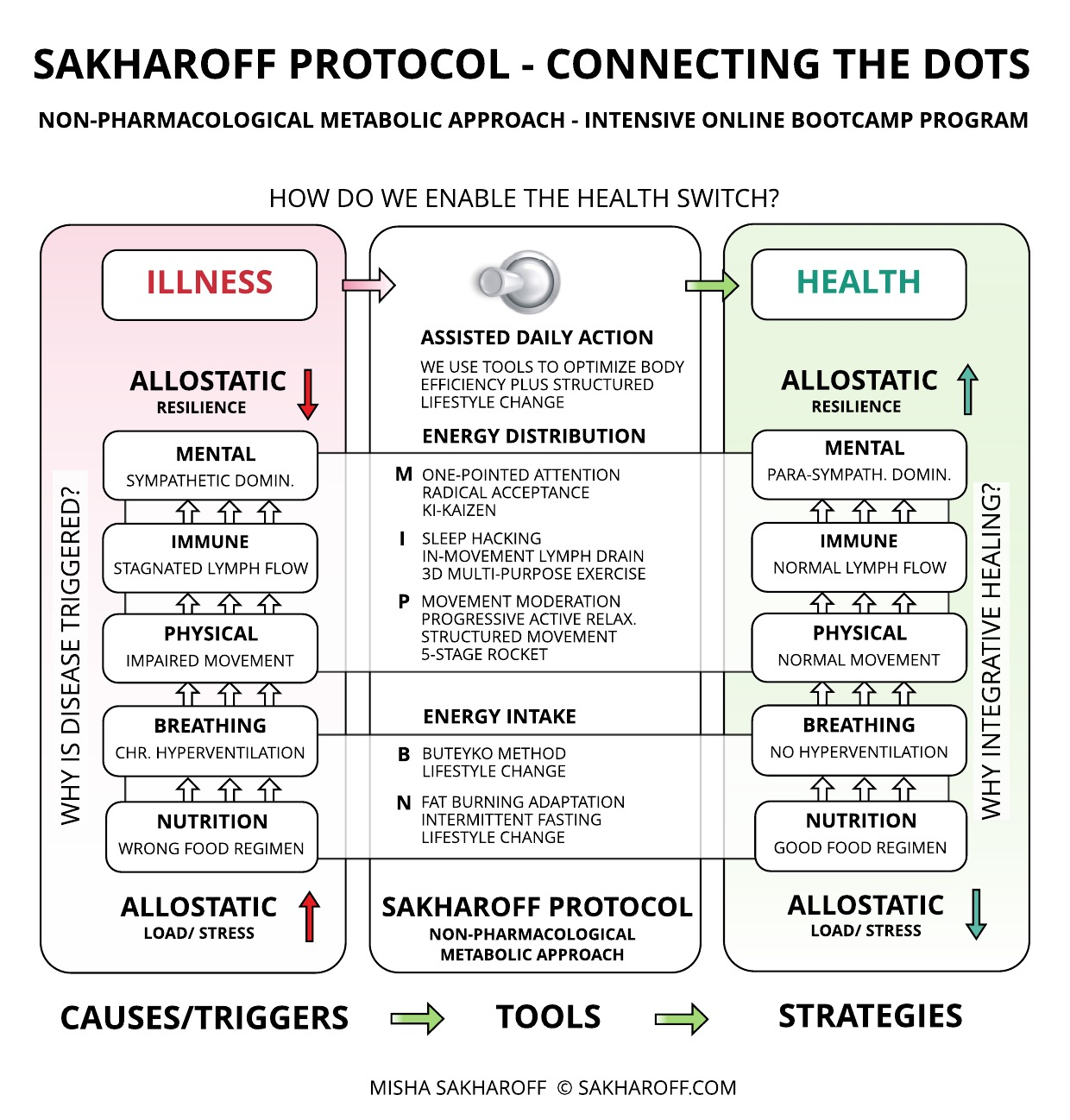 SAKHAROFF PROTOCOL - HOW DOES A NON-PHARMACOLOGICAL METABOLIC APPROACH WORK?